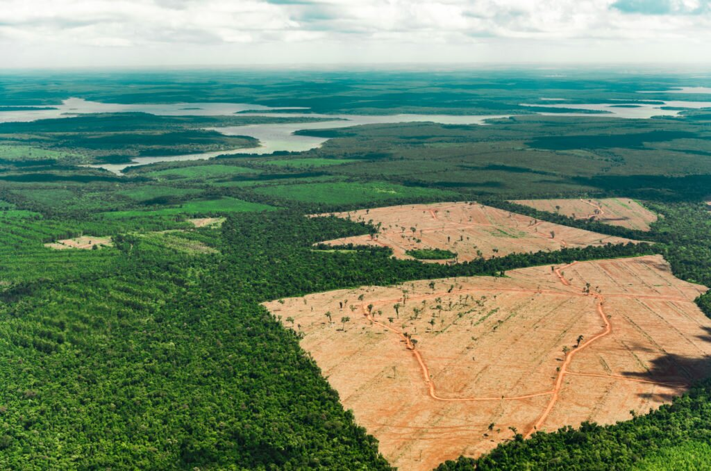 Humans are driving one million species to extinction, and agriculture is one of the major culprits