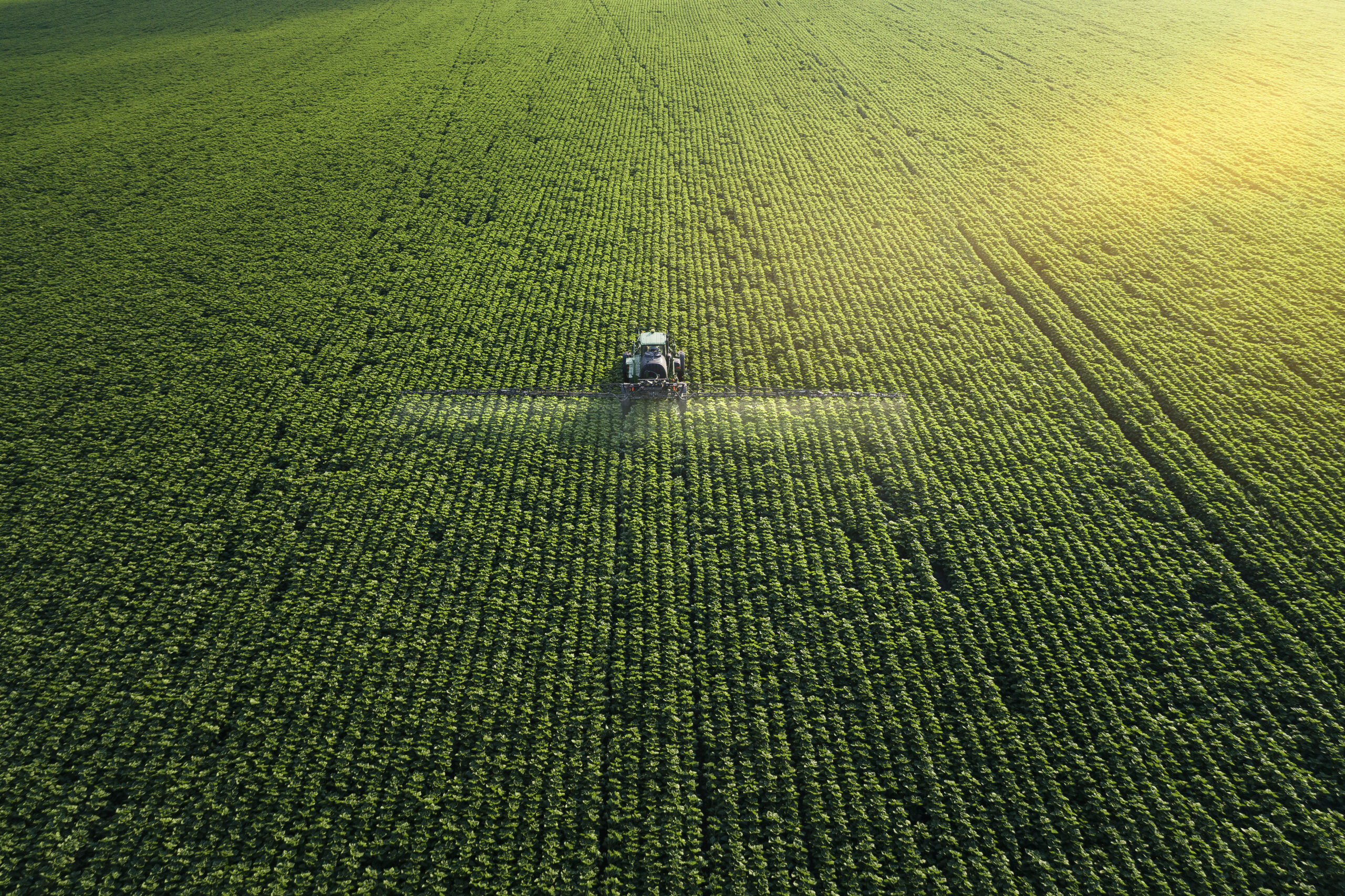 We cannot address the climate crisis without considering how we manage land to produce food