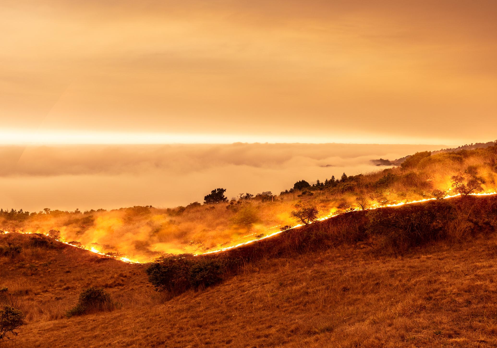 California Farming - An Inferno Rising