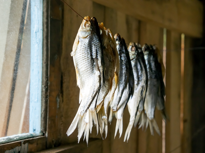 Drying small fish on ropes, a traditional know-how in coastal gastronomic landscapes